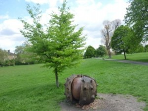 conker wide view