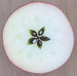 apple-star[1]