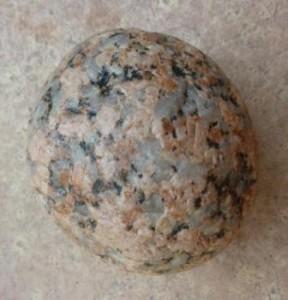 Stone Crop 1