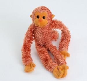 Monkey 23 May 2