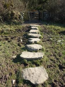 Stones - stepping stones